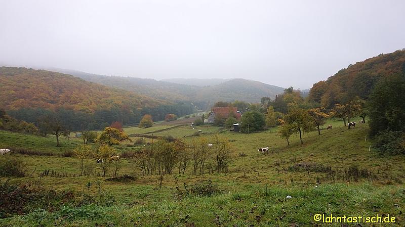 Katzenbach - Blick in die Landschaft