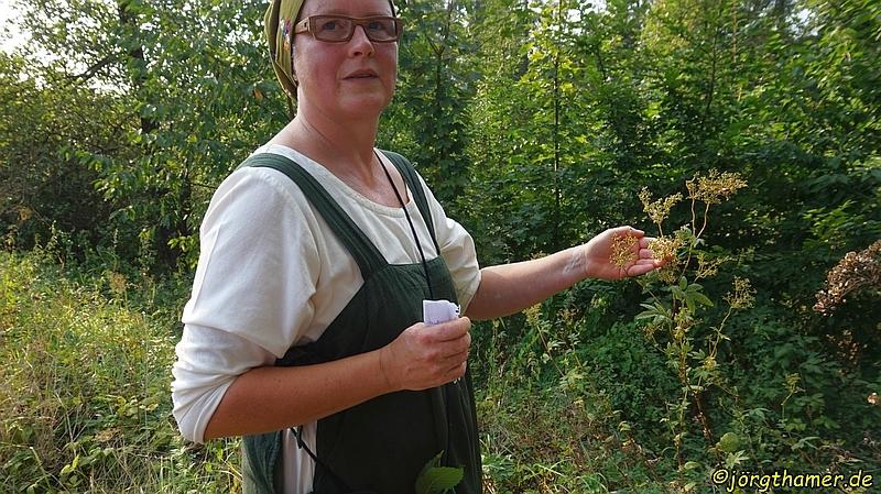 """Kräuterwanderung mit der """"grünen Frau"""""""