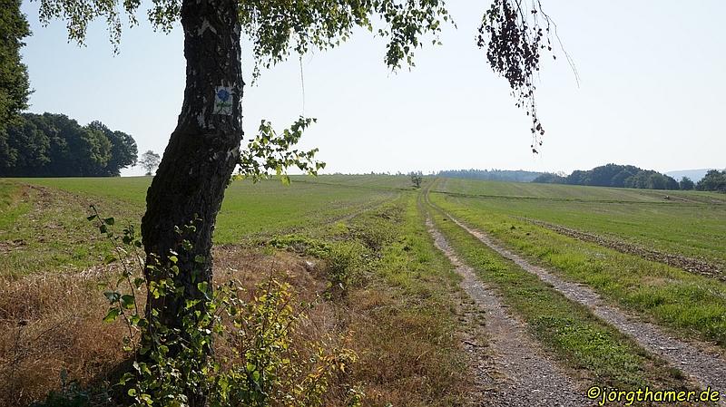 Natur- und Landerlebnis in Hessen